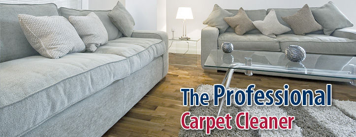 Professional Carpet Cleaning Fairfax Va